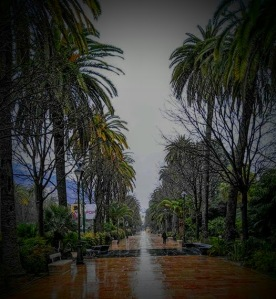 Parque 2016
