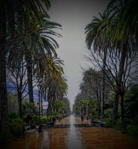parque-2016