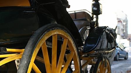 coche caballos detalle